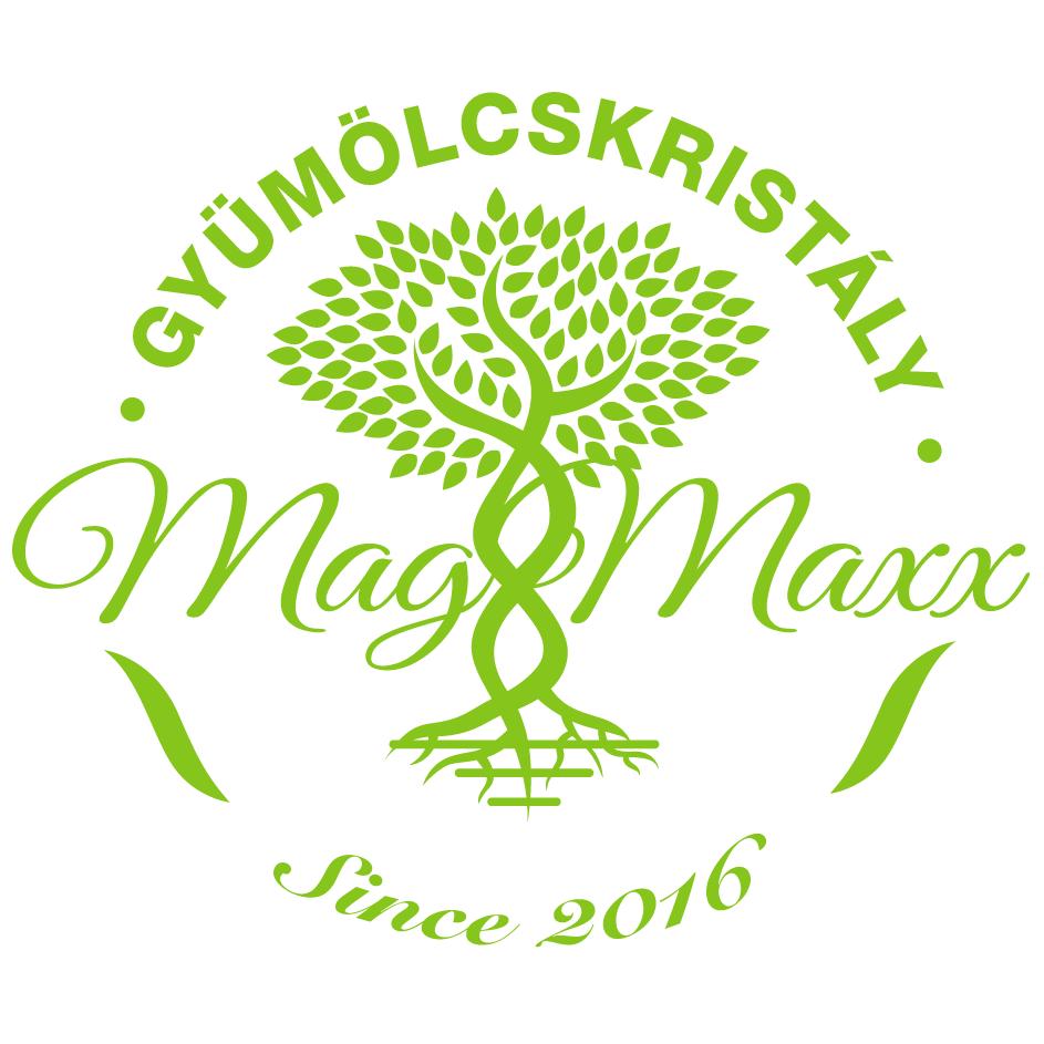 MagMaxx Gyümölcskirály