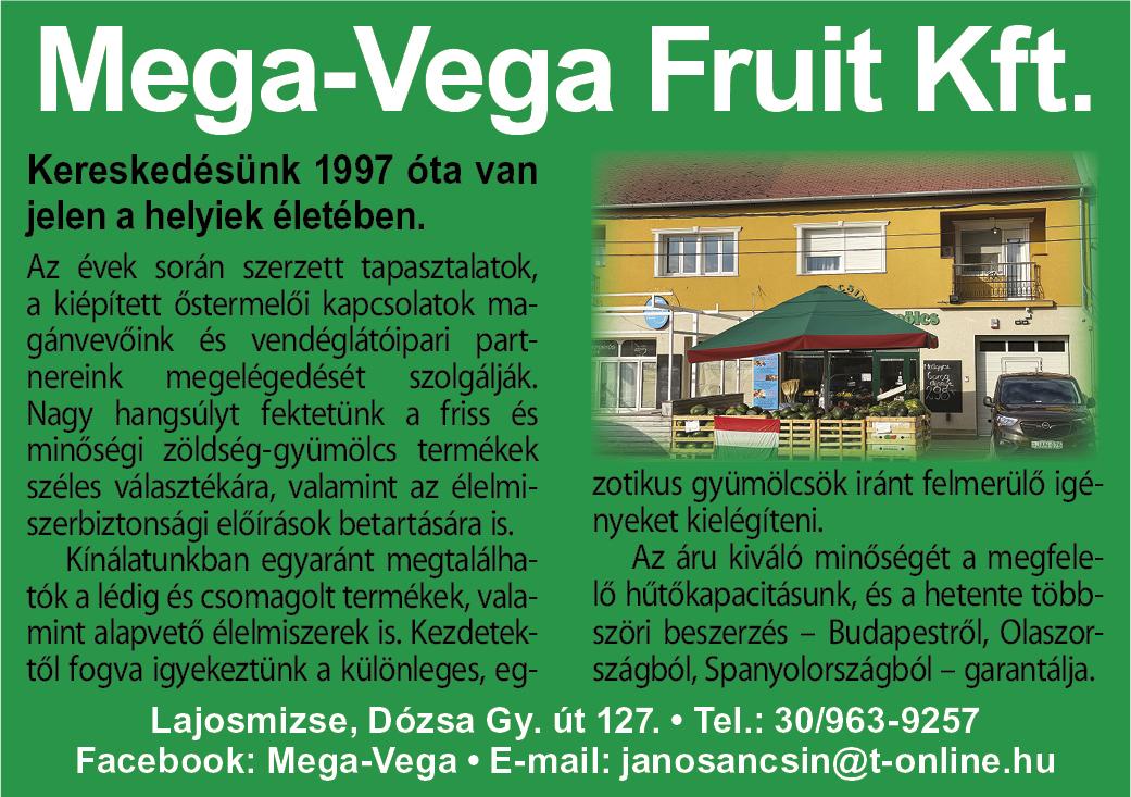 Mega-Vega Fruit LAJOSMIZSE